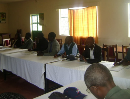 Capacity Building for Cooperatives and Saccos funded by ILO through CoopAfrica